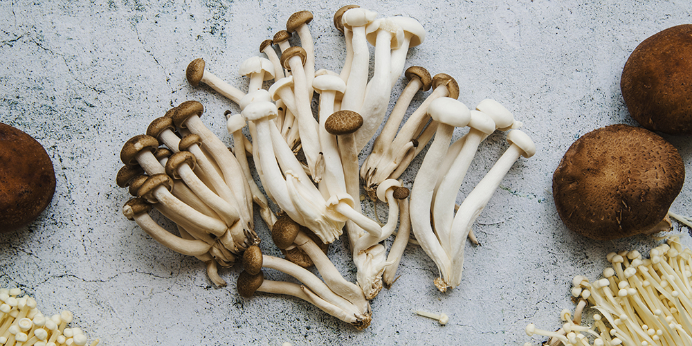 high-angle-view-of-mushrooms-on-floor